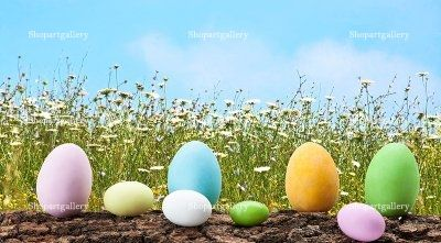 Easter Eggs In The Meadow by eZeePics Studio - shopartgallery.com  In the same page see the links where this photo is sold and different Zazzle products availbale with this design.