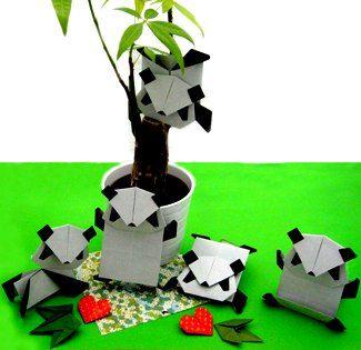 パンダ園 panda