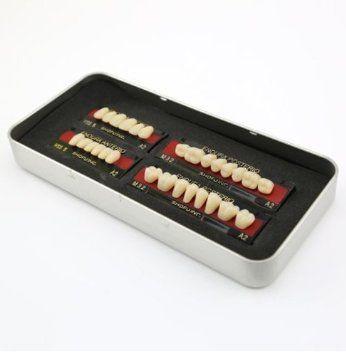 Autek 1 boîte / set nouvelle dentaire fausse dent dents Denture M32 couleur taille A2 des dents de 28 pc Dental False Tooth Teeth Denture M32 size A2 color 28-pc Teeth (Dental-043-FR): Amazon.fr: Fournitures de bureau