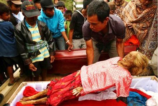 Toraja adalah salah satu suku yang berdiam di daerah pegunungan Latimojong, wilayah Utara dari Propinsi Sulawesi Selatan. Tepatnya di Kabupaten Tana Toraja, yang kini sebagian wilayahnya dimekarkan menjadi daerah otonom