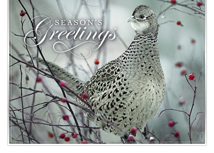 138 best business holiday greetings images on pinterest business buy business greeting cards from a trusted source reheart Gallery
