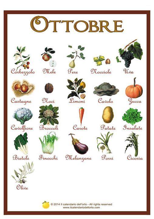 Calendario dell'orto di #ottobre
