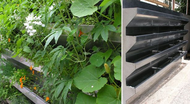 Vertical Vegetable Garden Rises in Style