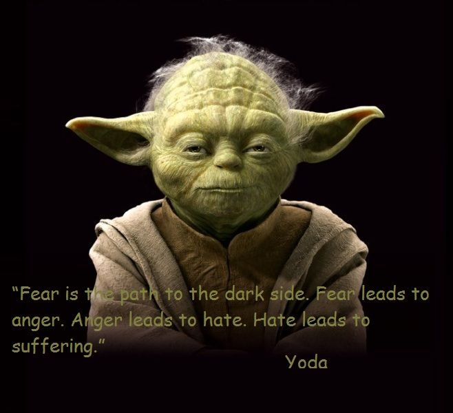 Fear is the path to the dark side. Fear leads to anger. Anger leads to hate. Hate leads to suffering - Yoda