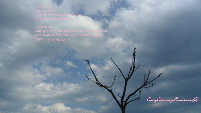 sam_1435 - Copia