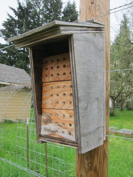 1000 Images About Bee Houses On Pinterest