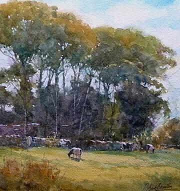 Robert Brindley「Cows, Aislaby」