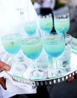 signature cocktails that represent the wedding colors?  One way to save on cash: instead of an open bar during the cocktail hour serve a signature cocktail (could also be two - His & Hers).