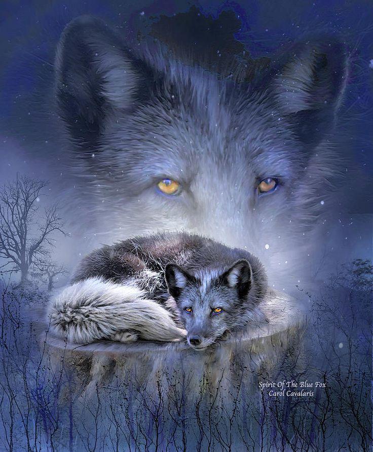 Spirit Of The Blue Fox ~ Carol Cavalari