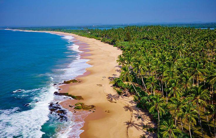 Playas en las que renacer - Playas en las que renacer