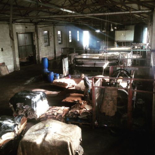 Today I visited Britains last remaining Oak bark tannery...