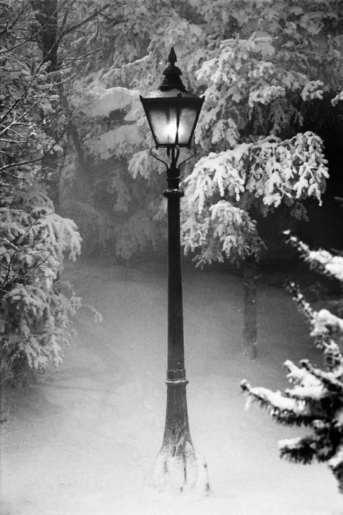 The lamppost at the entrance to Narnia, upon leaving the wardrobe