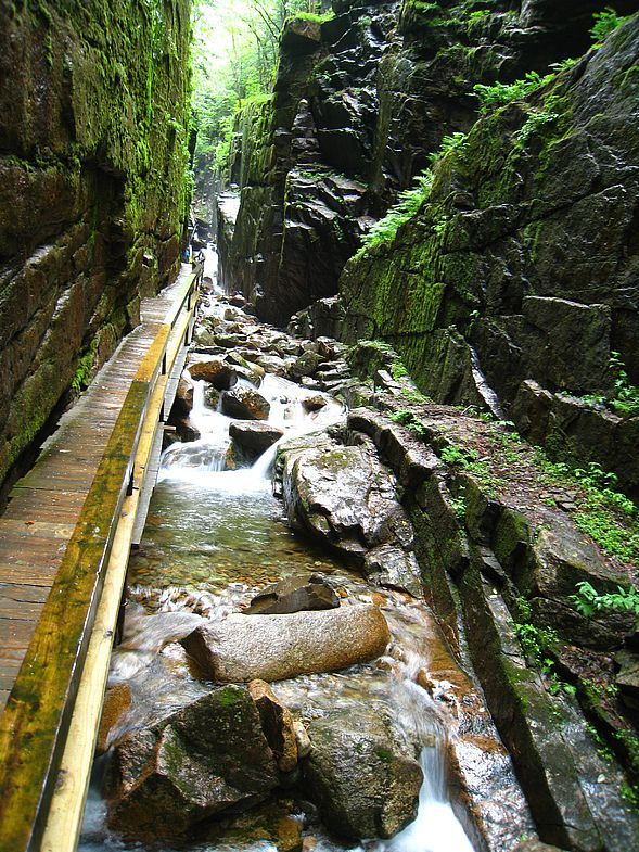 Flume Gorge. Franconia Norch State Park. ( Нью-Гэмпшир, США )