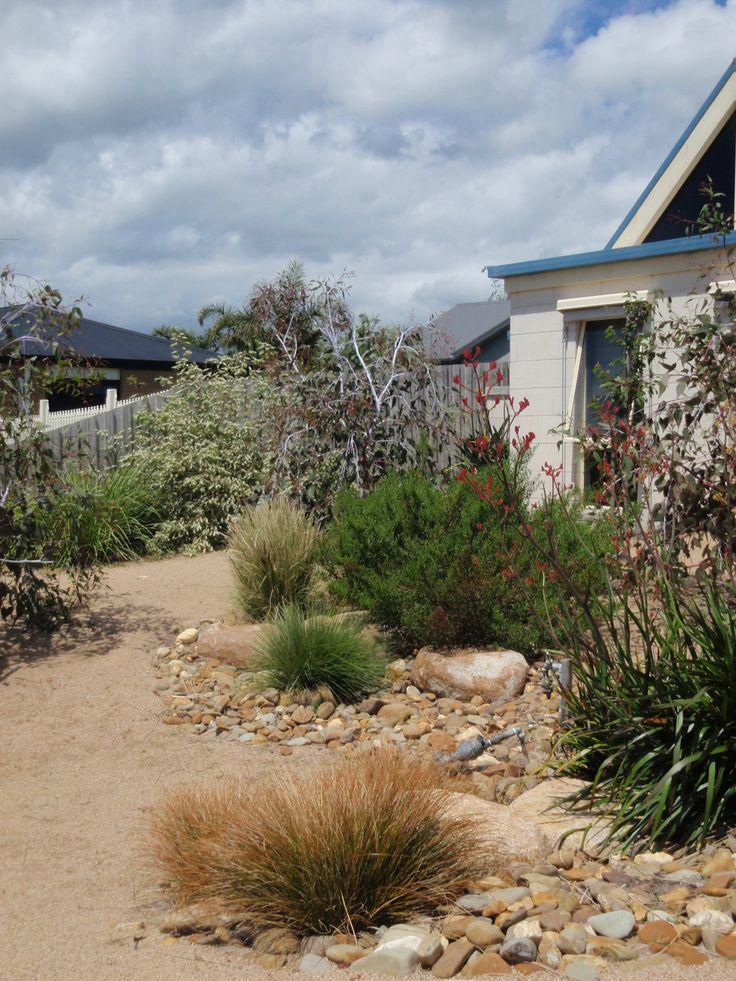 527 best Gardening in Australia images on Pinterest Native