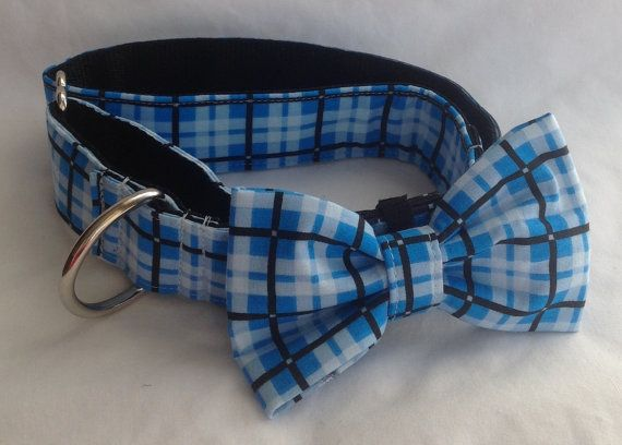 Martingale Dog Collar 1 And 1.5  Blue by chiwawagearharnesses