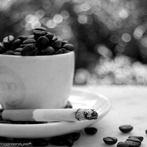 Se siete amanti del caffè e dell'immancabile sigaretta, vedetelo! -> Coffe and Cigarettes   Quit smoking and come to us.We have the latest e-cigarette models and a great variety of e-liquid flavors. Visit us at www.e-cigarilicious.com