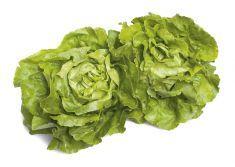 Vellutata di lattuga al timo e maggiorana - Tutte le ricette dalla A alla Z - Cucina Naturale - Ricette, Menu, Diete