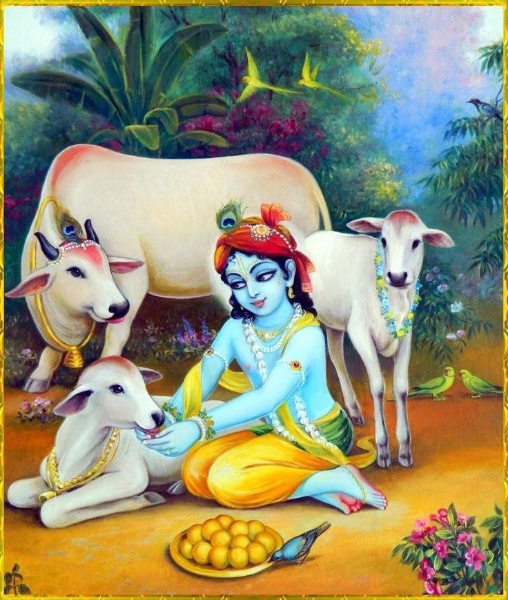 Gwal bala Krishna and the cows