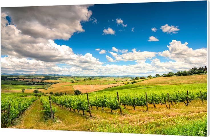 Het zomerse landschap van Toscane, Italië.