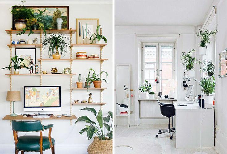 plants-creative-work-space-00