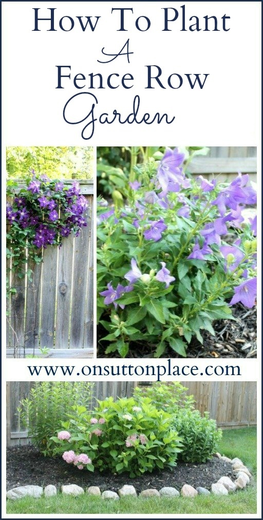 How To Plant A Fence Row Garden Gardens Good Ideas And