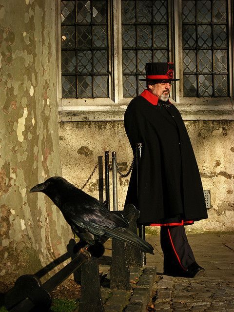 """A raven and guard at the Tower of London. According to superstition, there must always be 6 ravens present at the Tower, or else the monarchy, kingdom, and Tower itself will fall. In """"The Tudors,"""" when Anne was executed, you can see her look up at the flying ravens overhead. In actuality, they all stopped flight and sat on the edge of the Tower as she lost her head...something eyewitness accounts of the execution described as not only eerie, but highly unusual."""
