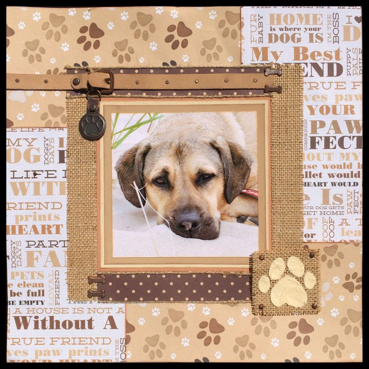 """""""Cooper-Doo"""" — 12x12 1-page layout using Kaiser Craft """"Furry Friends Collection"""" papers, Ranger texture paste, Adirondack acrylic paint dabber, and miscellaneous extras. 04.2015 — Jill Kulchinsky"""