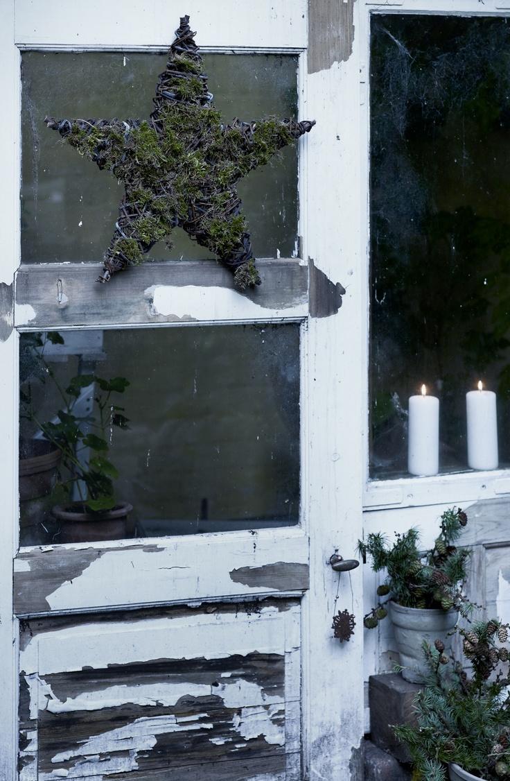 ,: Moss Stars, Crafts Ideas, Mossy Stars, French Bulldogs, Heart Stars, Xmas, Screens Doors, Christmas Decor, Old Doors