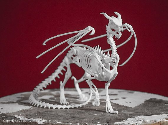 Dragon Skeleton 3D Print Taxidermy by MythicArticulations on Etsy