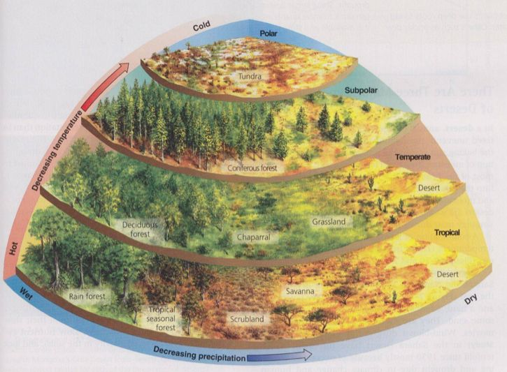 Excellent Climate/Biome Diagram for Worldbuilders