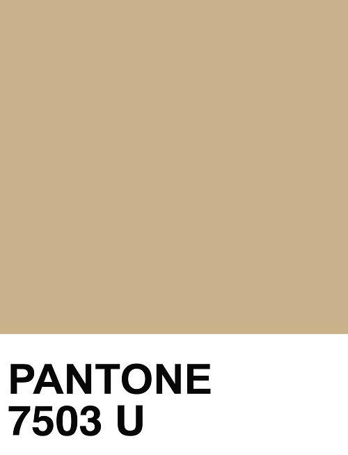 pantone 7503 U