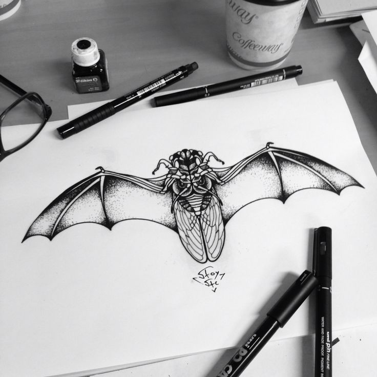 Cockroach insect bat wings