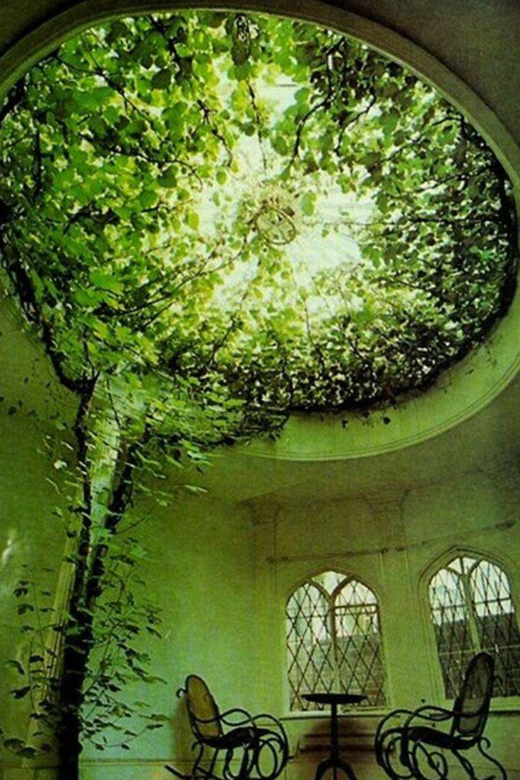 #ficus  #picoftheday #instadaily #instaphoto #instapic #instalike #tweegram #lfl #green #garden #nature #colorful #design #instadesign #homedesign #lifestyle #style #cool #strepi #designdecor #interiors #interiordesign #interiordesign #interiordesignideas #forniture #fornituredesign #arredamento #arredamentointerni #vsco #vscocam edx - breathin https://youtu.be/OypWbPDHd5c