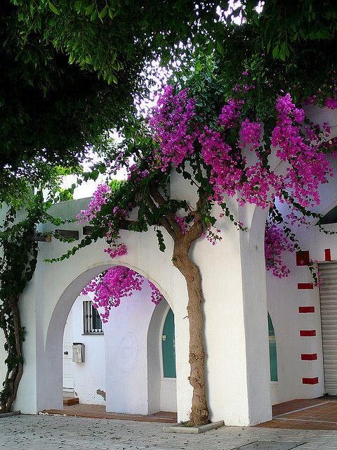 Mediterranean charm in Torremolinos, Andalusia
