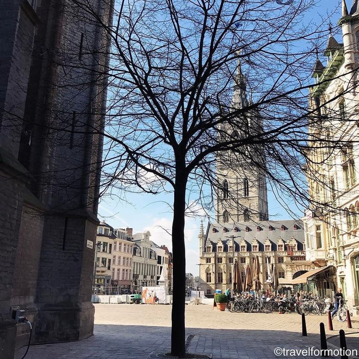 No #leaves but already #blue #spring #sky in the #city of #ghent #visitgent #gent happy that this #tree #survived the #construction #works at the #cathedral #vsco #vscocam #wanderlust #travel #travelgram #flanders #visitflanders #landscape #belgium #igbelgium #historic #centre