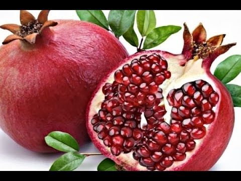 Semillas de Granada, como germinar (Punica granatum) - YouTube