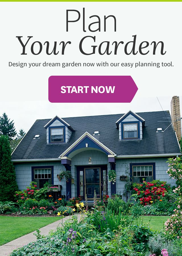 In just a few minutes you can be create a garden design plan for a beautiful yard at home on your computer screen.