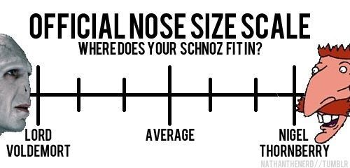 Nose scale.Size Scales, Nose Scales, Laugh, Harrypotter, Funny, Harry Potter, Nigel Thornberrys, Wild Thornberrys, Nose Size