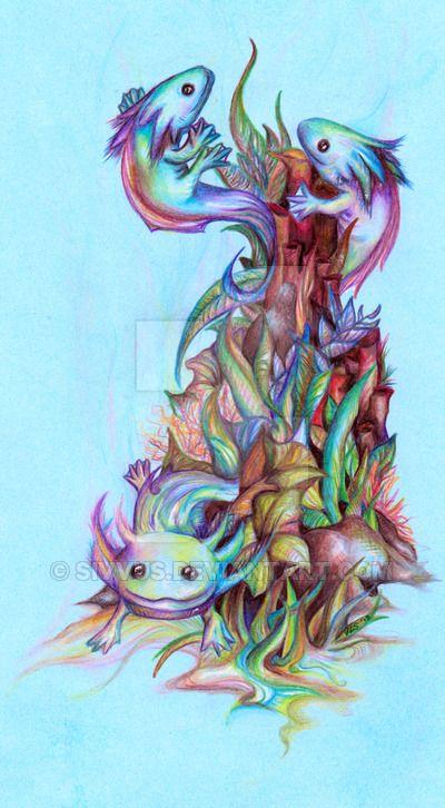 17 Best Ideas About Axolotl Tank On Pinterest Big