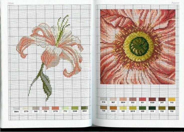 Gallery.ru / Фото #3 - Flowers - Mongia