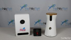Best Dog Camera Comparison