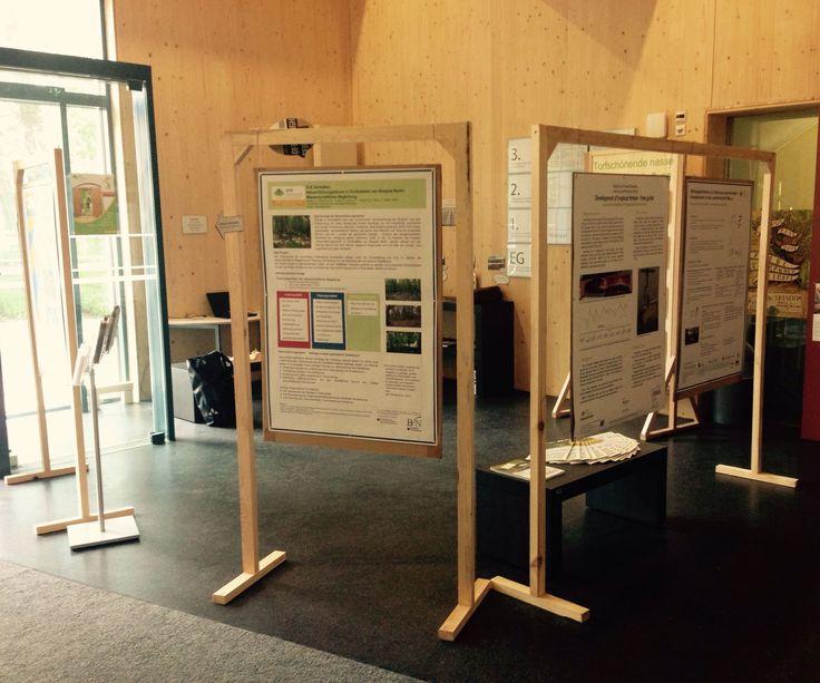 Build Reusable Scientific Exhibition Displays With Roof Battens  //  WOOD CONTEST Plz VOTE :)