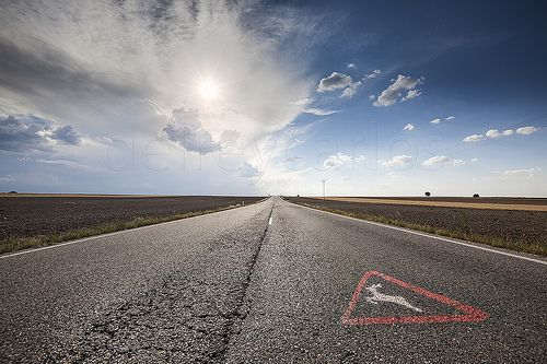 _MG_6608 Travel by road with sign of danger.jpg 15,2 MB 5616 × 3744