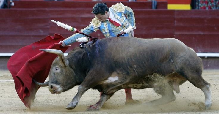 Diego Urdiales desafia o animal durante tourada na cidade de Valencia (Espanha)