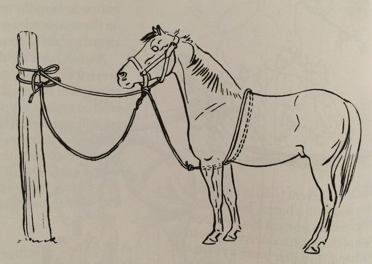 This is called a puller tie or belly rope tie. It helps teach a horse go give to pressure. If the horse pulls back it takes some of the strain and pressure off the horse's face and neck.
