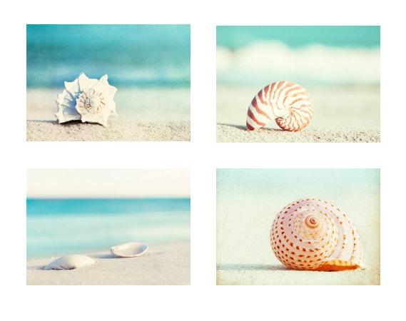 Beach Photography Set – Four Photographs, seashell sea shell photo print seashore decor turquoise aqua teal blue wall art – 11×14, 8×10, 5×7 – Holly @normajeans