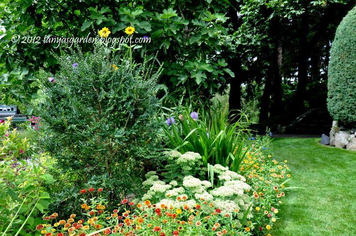 Pelageya, русская американка: Средиземноморский сад
