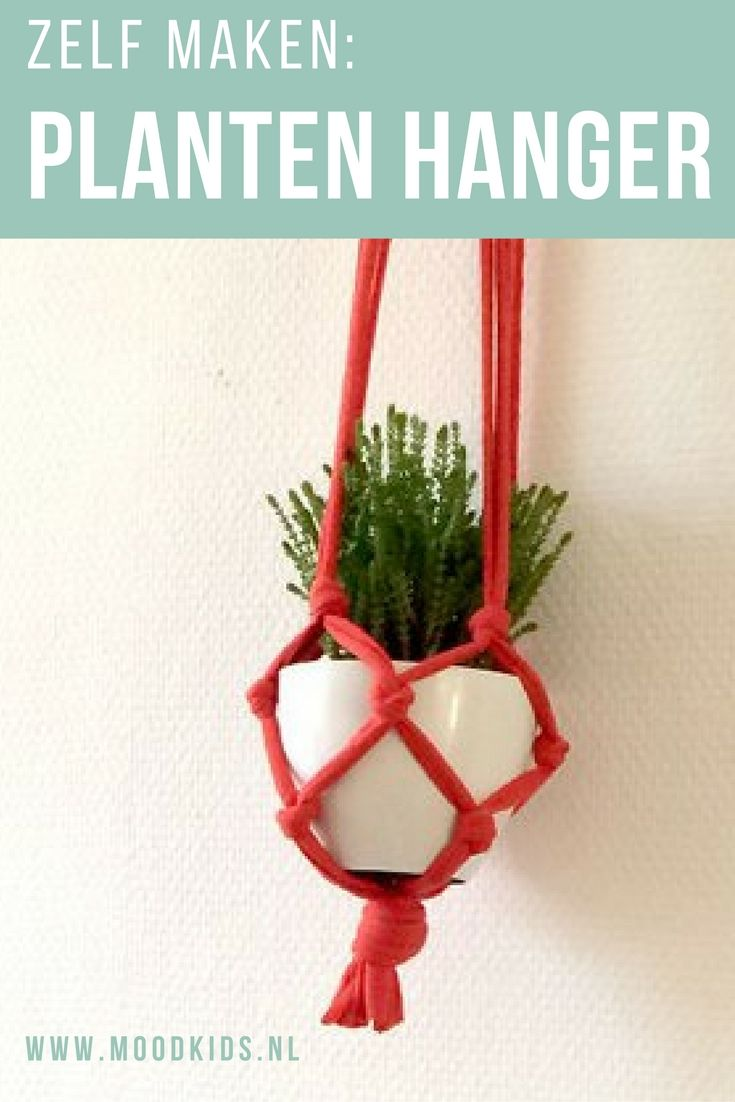 Maak ook deze leuke plantenhanger. Lees de stap voor stap beschrijving op de blog.
