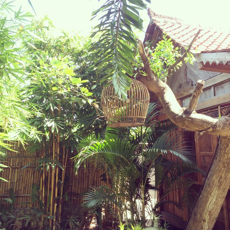 Garden bungalow. Javanese house 20m2 with bamboo