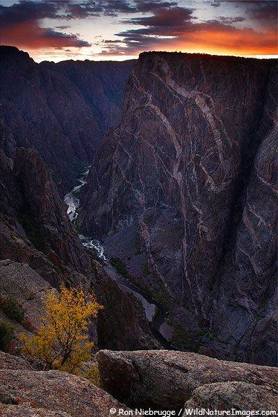 Pinkish-white veins of rock infiltrate the otherwise dark cliff face of the tallest vertical wall in Colorado. Ascending 2,300 feet from the Gunnison River, the cliff face is the park's signature vista.